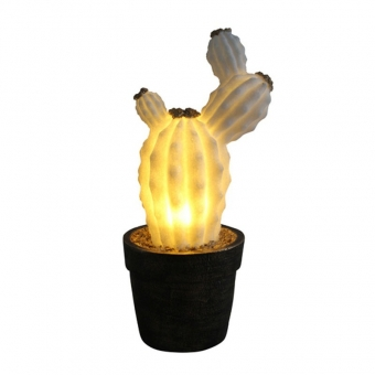 Cactus Craft Light